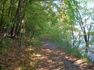 Afton_State_Park_trail